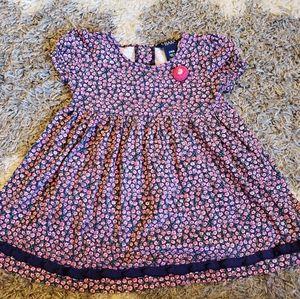 Chaps 24M floral dress